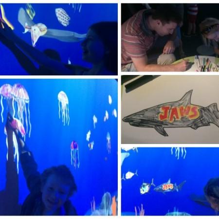 Art Aquarium at Melbourne Aquarium