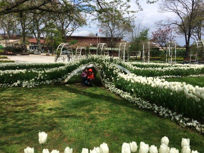 topkapi tulip garden